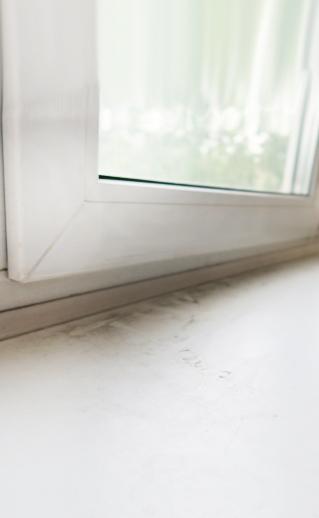 Хотите избавиться от пыли на подоконнике и в доме?